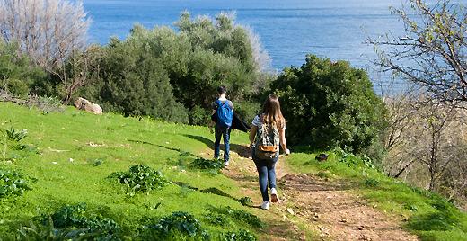 Passeggiata nella riserva dello Zingaro